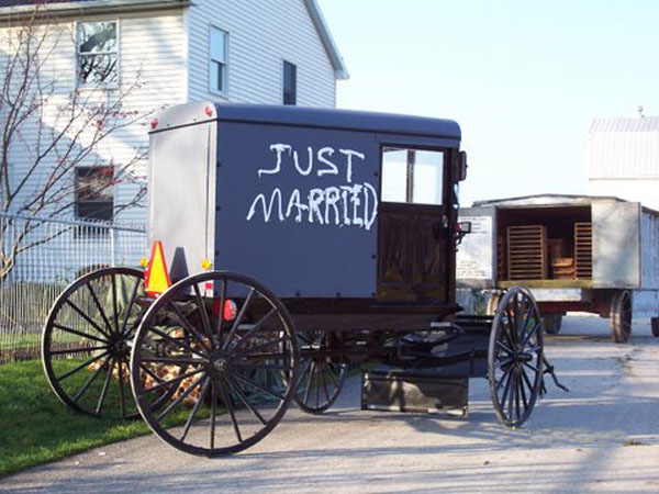 Amish Wedding Celebration