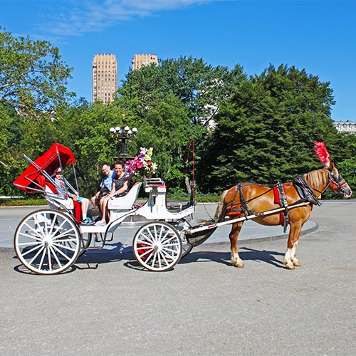 Central Park Carriage Ride Featuring Lunch at Tavern on the Green