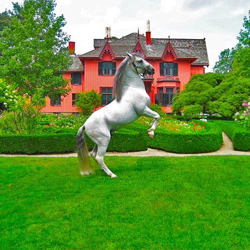 Royal Lipizzaner Stallions Performing at the Historic Roseland Cottage